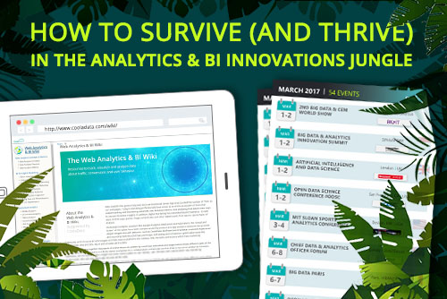 web analytics and BI jungle